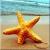 com.themefree.beachhdwallpaper